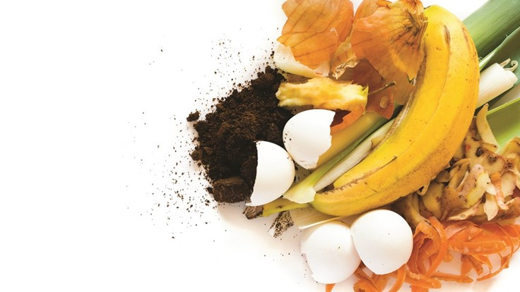 Top composting programs lead the way in organics diversion